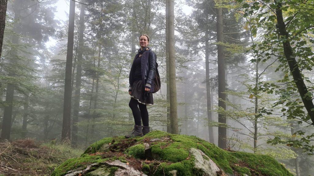 Nine Gees im nebeligen Wald