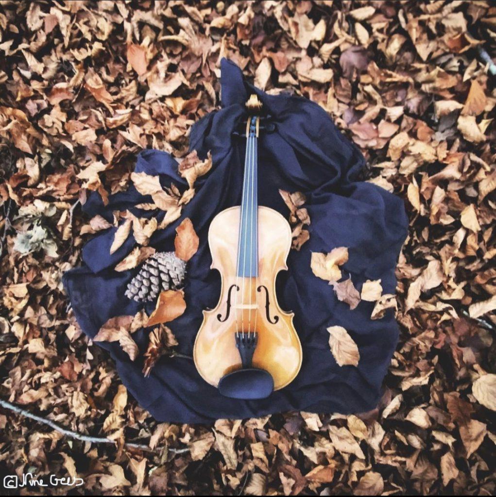 Geige im Herbstlaub